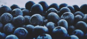 berries-blueberries-close-up-1207288